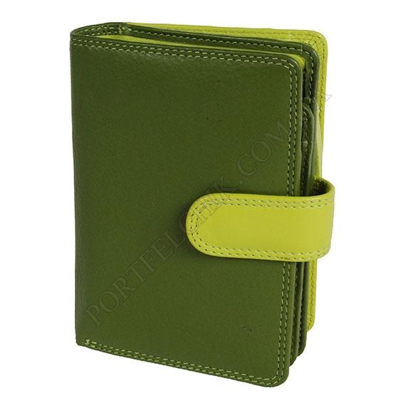 Жіночий гаманець Visconti RB-51 Lim зелений, комбінований