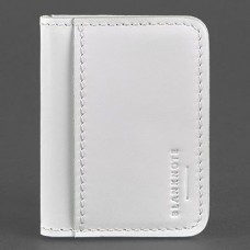 Обложка для автодокументов и id-паспорт BlankNote BN-KK-4-light