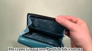 Женский кошелек Visconti RB-43 Blue
