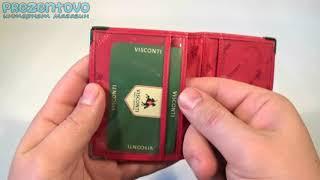 Обложка для автодокументов и id-паспорт Visconti TC-5 Red